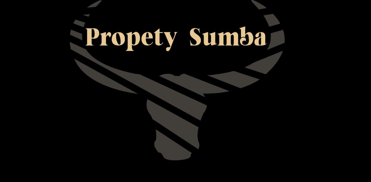 logo onvition