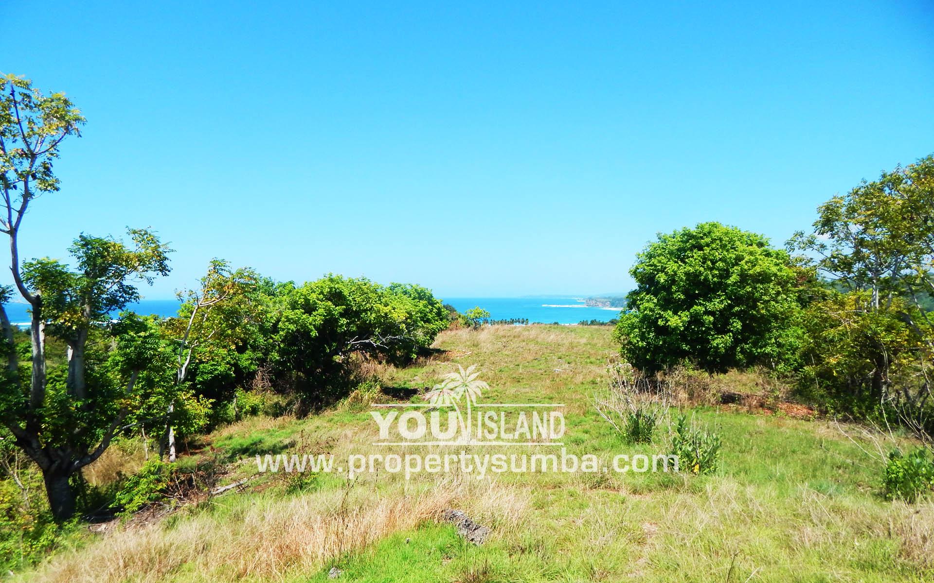 Property Sumba Dangla Rada 523 3057m2 4