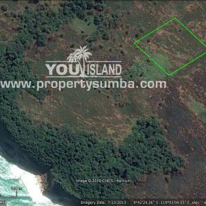 Land 27 Tanamete 10000 M2 Maps2 (1)