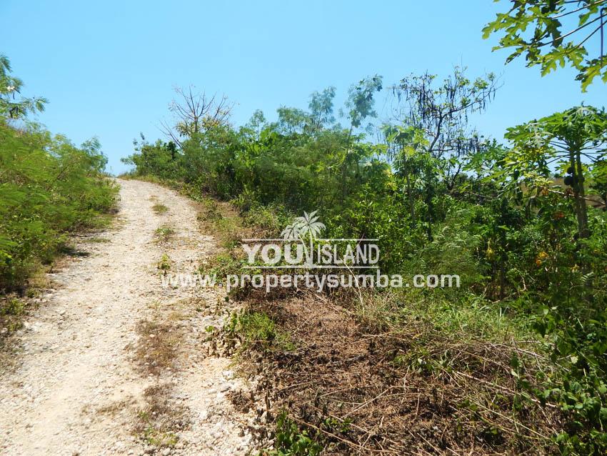 Land 37 Loku Kumha 8490 M2 1
