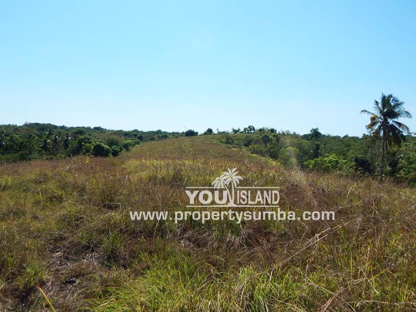 Land 37 Loku Kumha 8490 M2 10