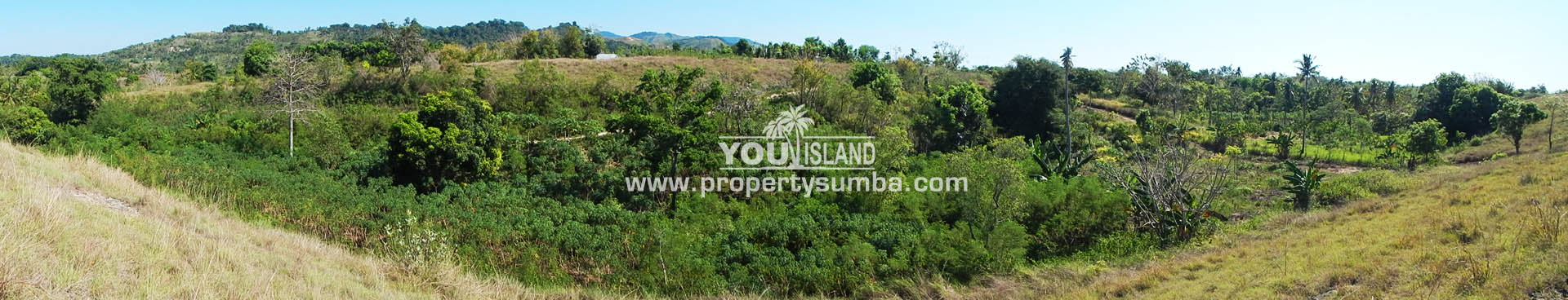 Land 37 Loku Kumha 8490 M2 12