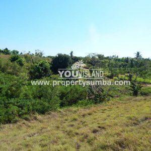 Land 37 Loku Kumha 8490 M2 13