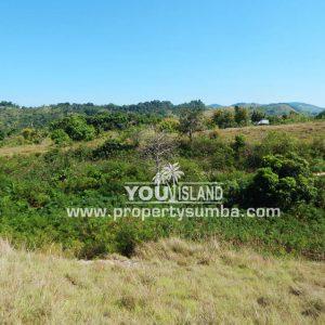 Land 37 Loku Kumha 8490 M2 14