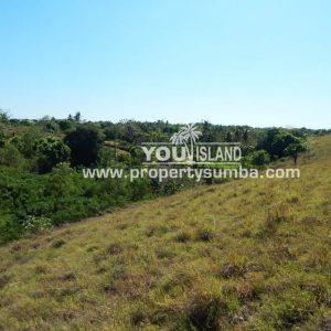 Land 37 Loku Kumha 8490 M2 15