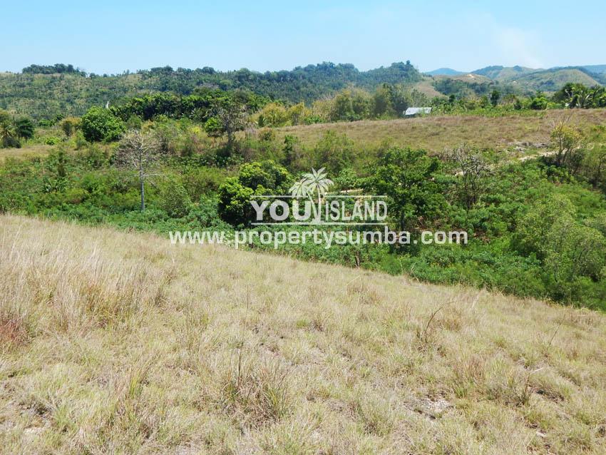 Land 37 Loku Kumha 8490 M2 3