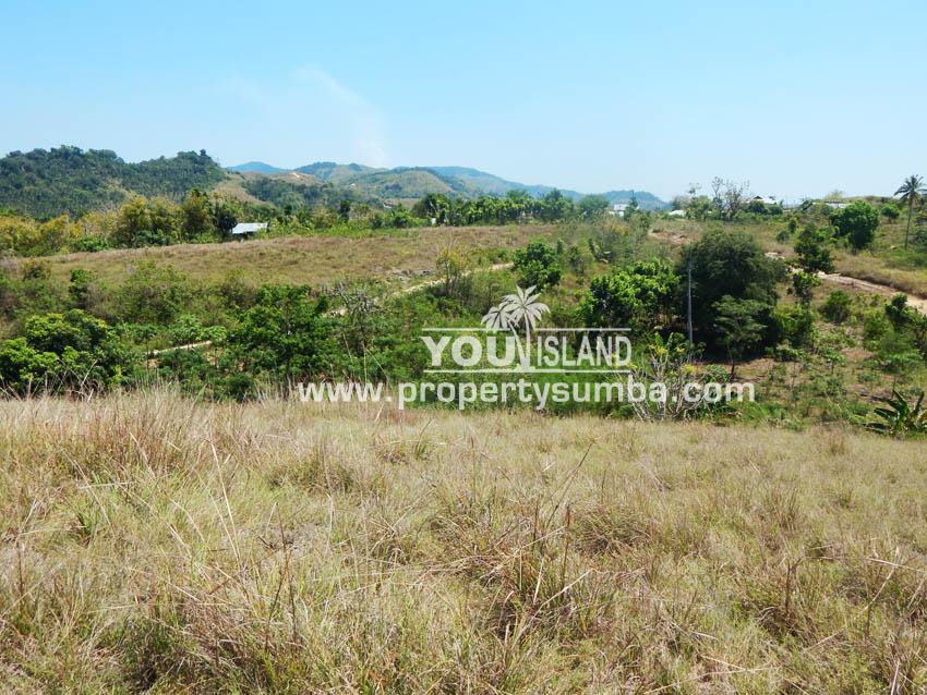 Land 37 Loku Kumha 8490 M2 5