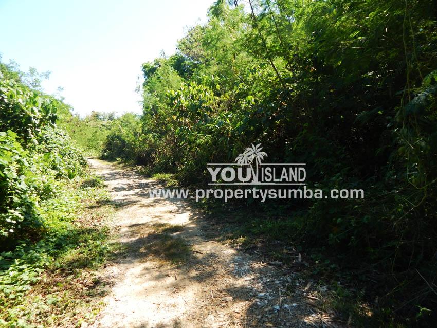 Land 37 Loku Kumha 8490 M2 7