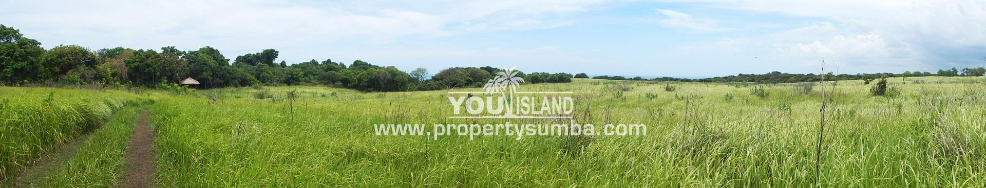 Land 28 Tanamete 63990 M2 11