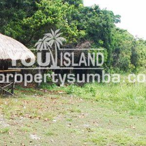 Land 28 Tanamete 63990 M2 5