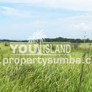 Land 28 Tanamete 63990 M2 6