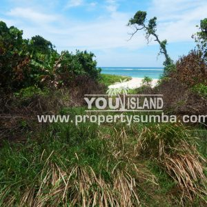 Land 29 Wainyapu 46190m2 15