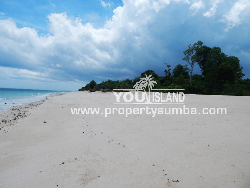 Land 29 Wainyapu 46190m2 4