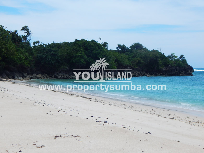 Land 29 Wainyapu 46190m2 5