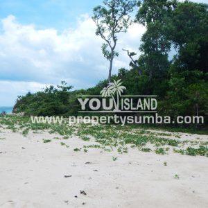 Land 29 Wainyapu 46190m2 6