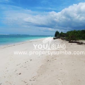 Land 29 Wainyapu 46190m2 9