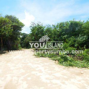 Land 30 Wainyapu 4022m2 9