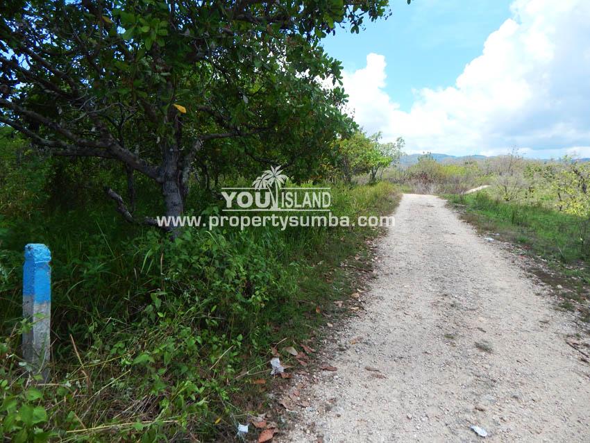 Land 32 Waitabula 6419m2 16