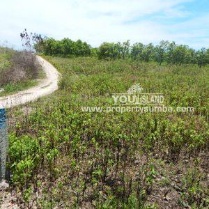 Land 32 Waitabula 6419m2 9