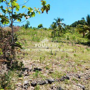 Land 33 Hoba 1001 M2 1