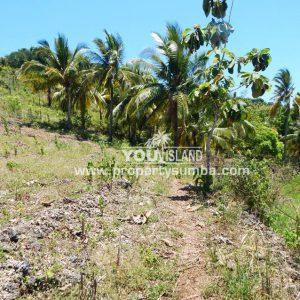 Land 33 Hoba 1001 M2 2