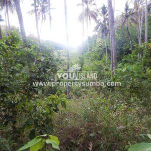 Land 34 Harona Kalla 2881m2 2