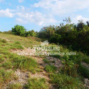 Land 36 Wunta Paweru 10500 M2 10
