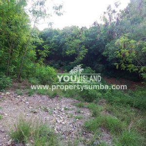 Land 36 Wunta Paweru 10500 M2 12