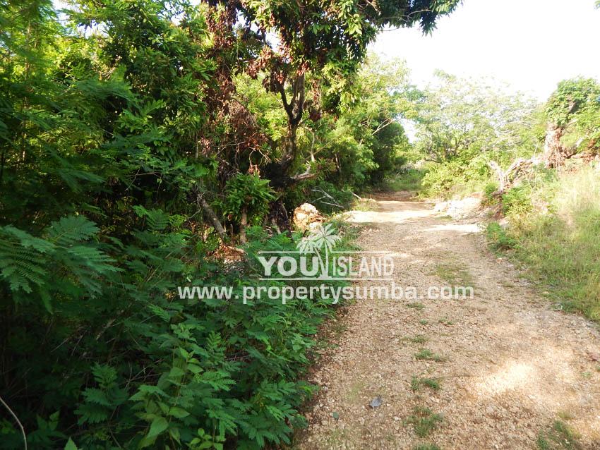 Land 36 Wunta Paweru 10500 M2 8
