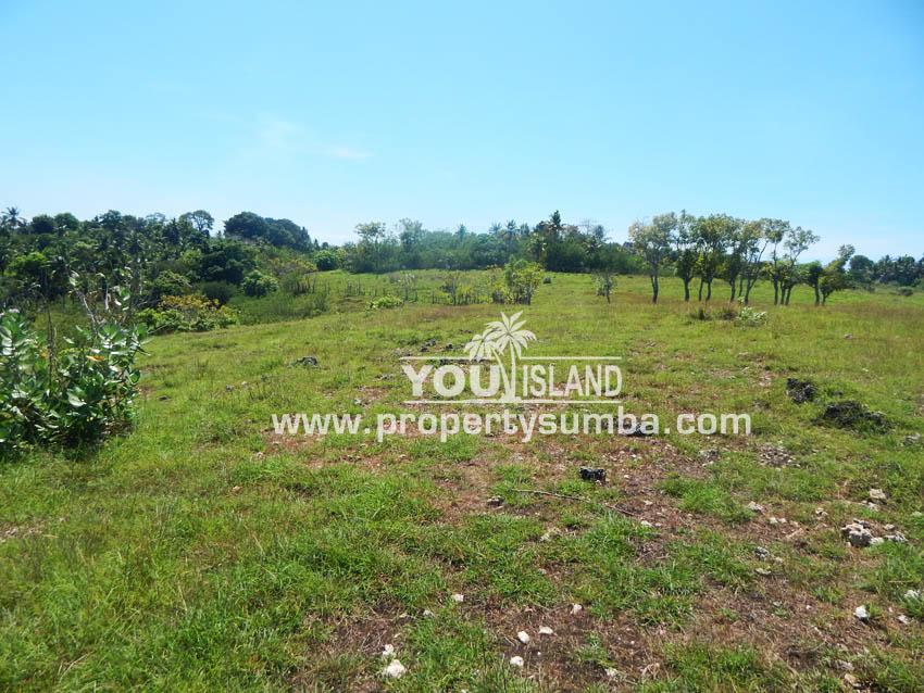 Land 38 Wewuji 9246 M2 3