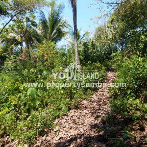 Land 39 Harona Kalla 4841 M2 7