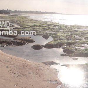 Land25 Kaghona 39261 M2 11