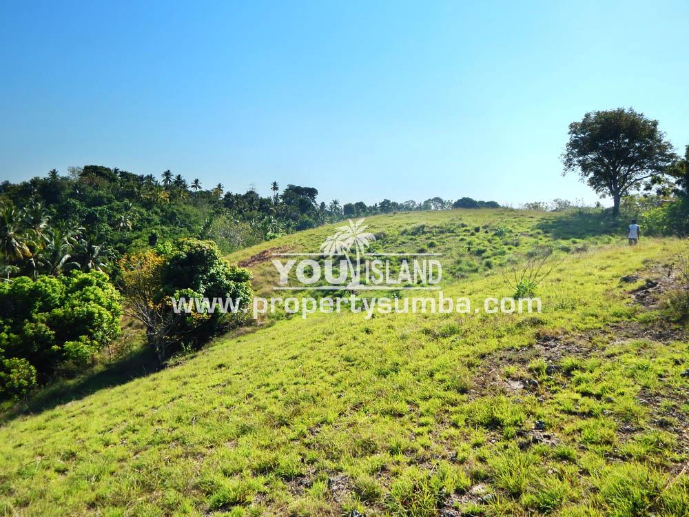 Property Sumba Kedu Lere 532 2884m2 4