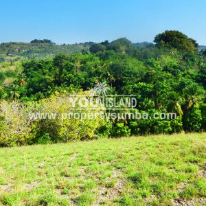 Property Sumba Kedu Lere 532 2884m2 6